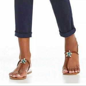 Antonio Melani Turquoise Turtle Tortoise Sandals
